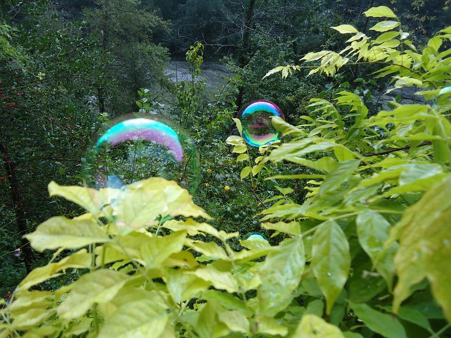 Seifenblase - Flussbett - Susanne Heule - Praxis für Psychotherapie und Coaching